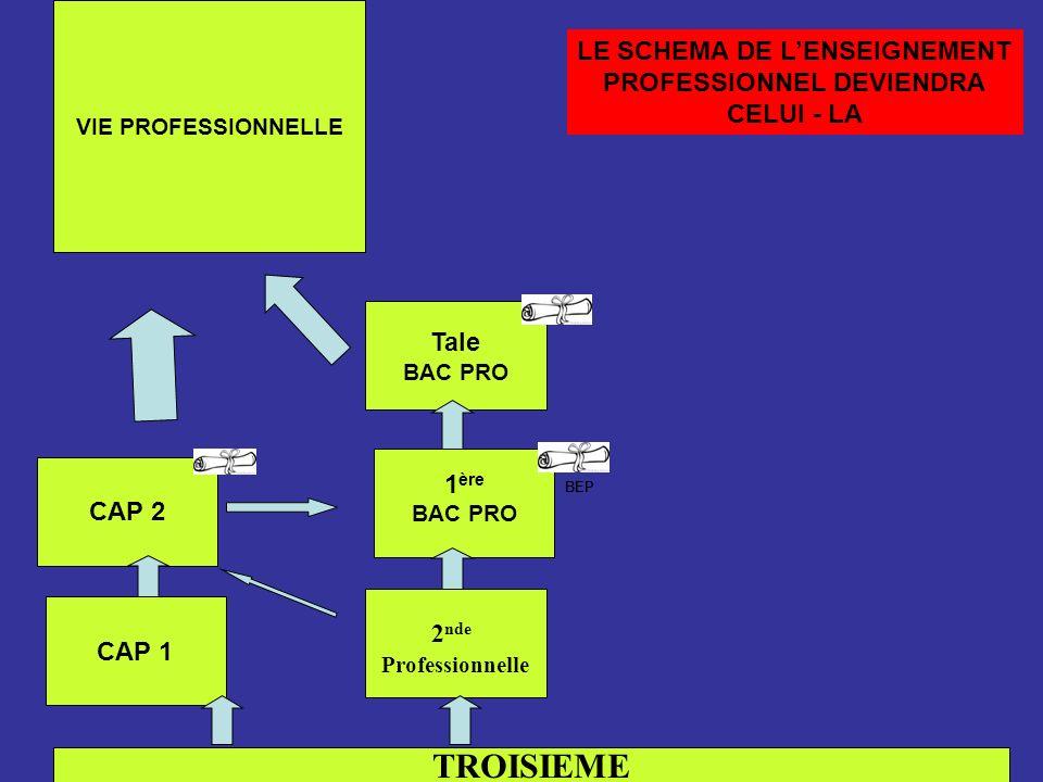 LE SCHEMA DE L'ENSEIGNEMENT PROFESSIONNEL DEVIENDRA