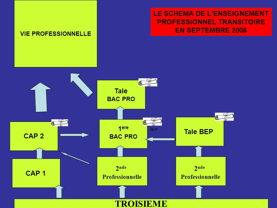 LE SCHEMA DE L'ENSEIGNEMENT PROFESSIONNEL TRANSITOIRE