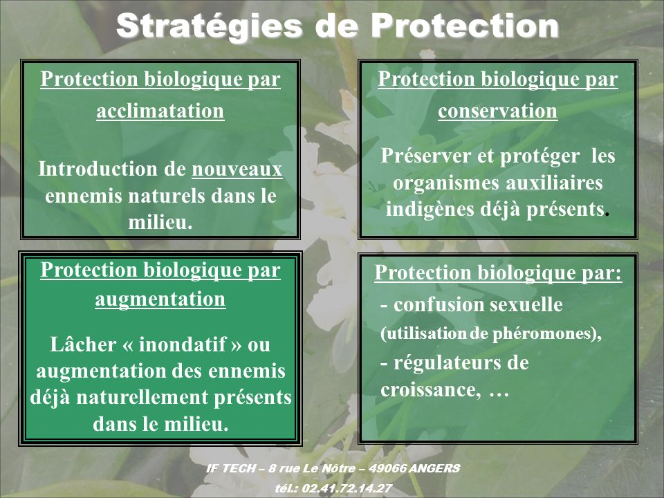 Stratégies de Protection