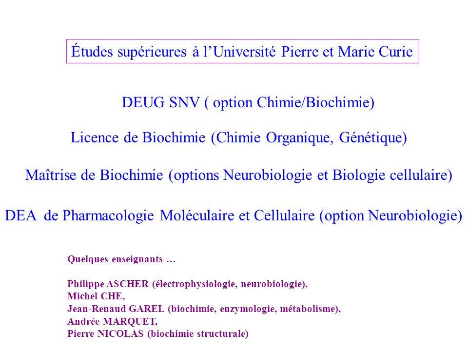 Études supérieures à l'Université Pierre et Marie Curie