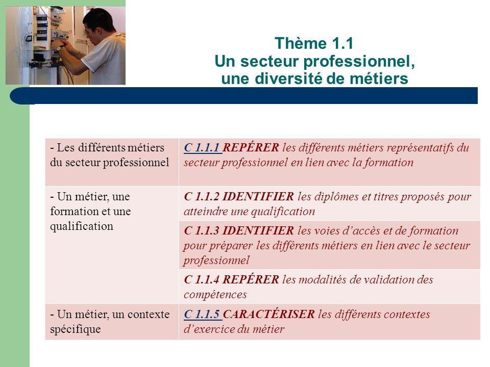 Thème 1.1 Un secteur professionnel, une diversité de métiers