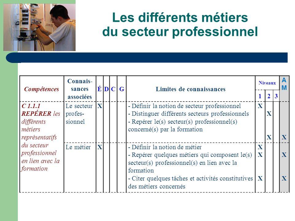 Les différents métiers du secteur professionnel