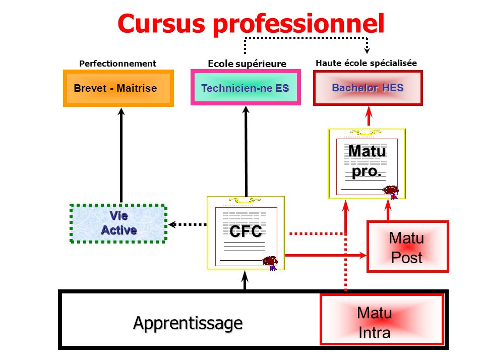 Cursus professionnel Apprentissage Matu pro. CFC Matu Post Matu Intra