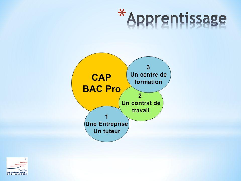 Apprentissage CAP BAC Pro 3 Un centre de formation 2 Un contrat de