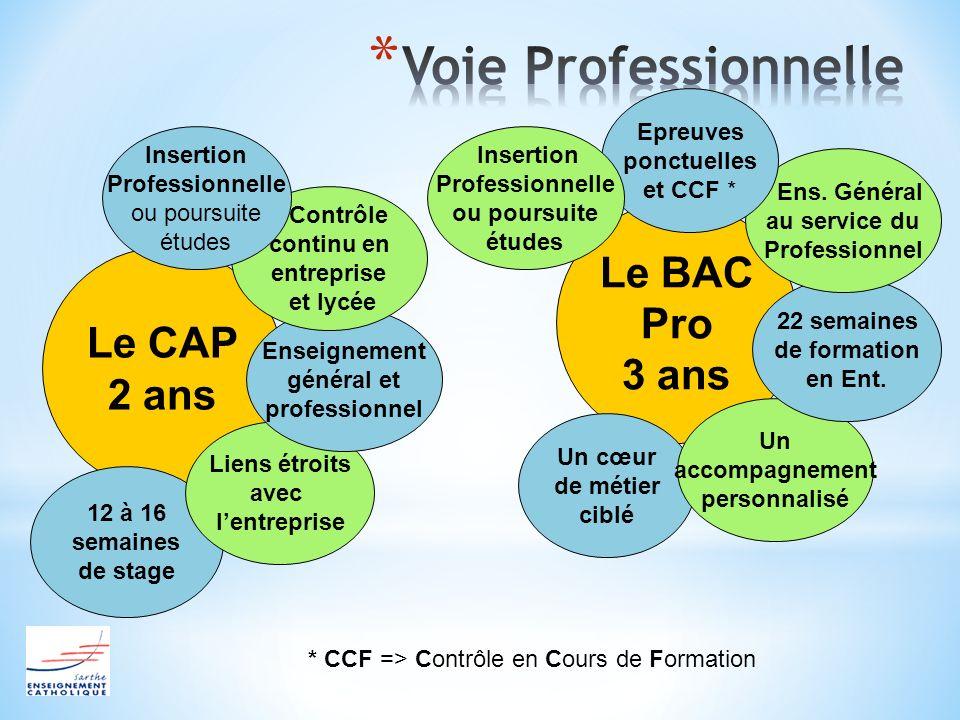 Voie Professionnelle Le BAC Pro 3 ans Le CAP 2 ans