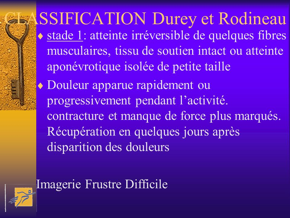 CLASSIFICATION Durey et Rodineau
