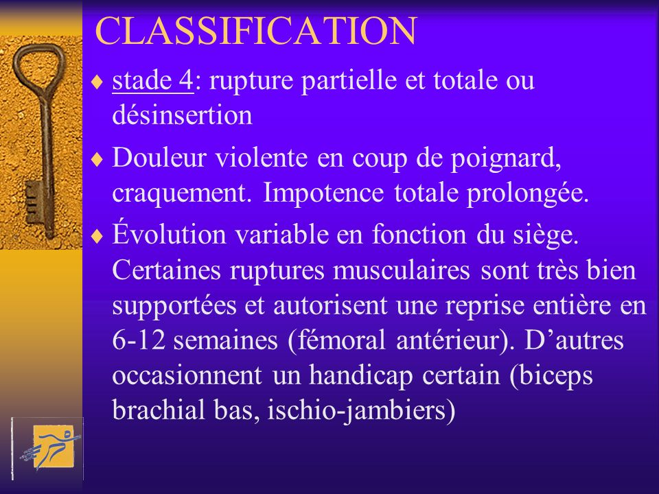 CLASSIFICATION stade 4: rupture partielle et totale ou désinsertion