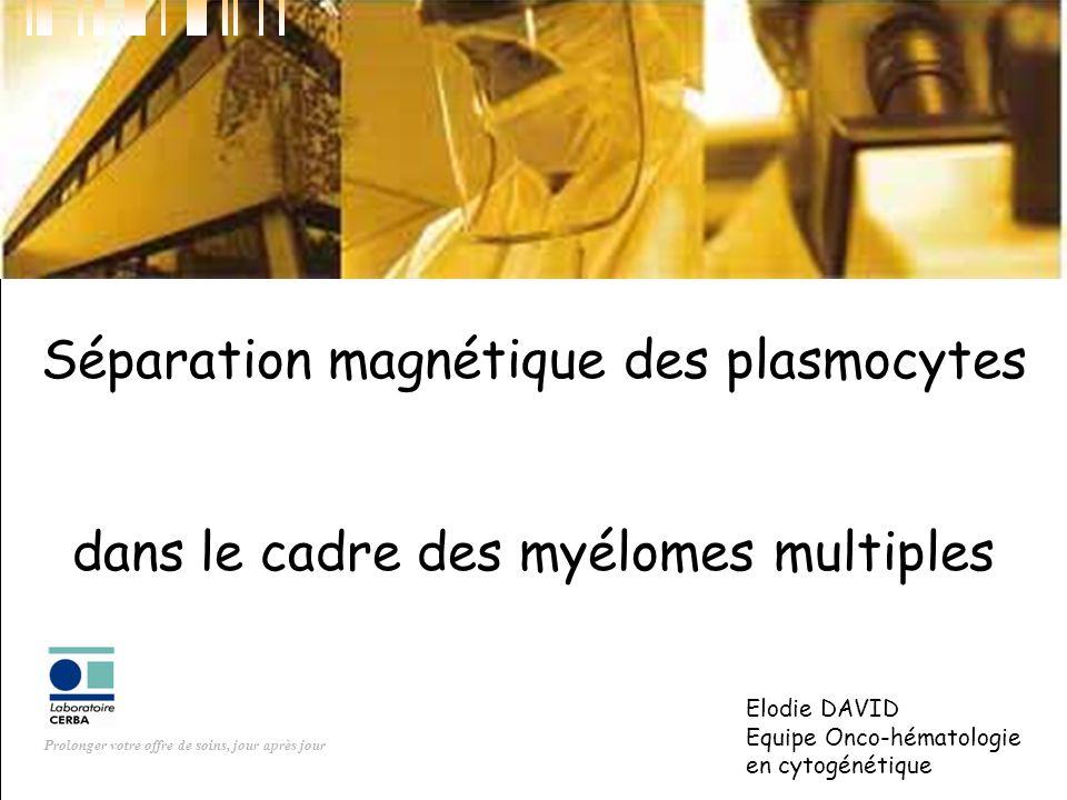 Séparation magnétique des plasmocytes