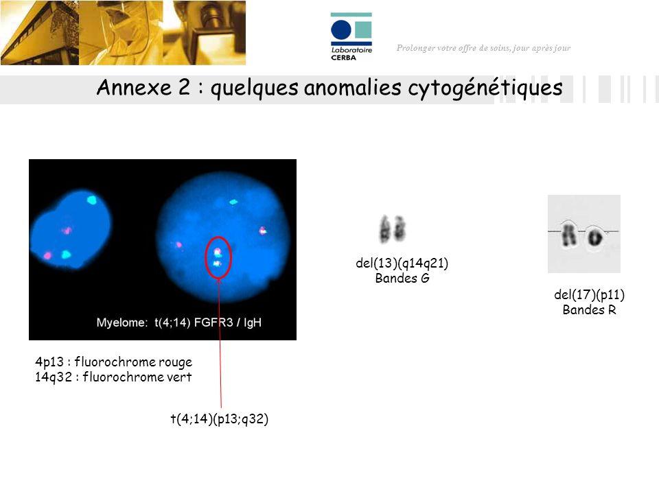 Annexe 2 : quelques anomalies cytogénétiques