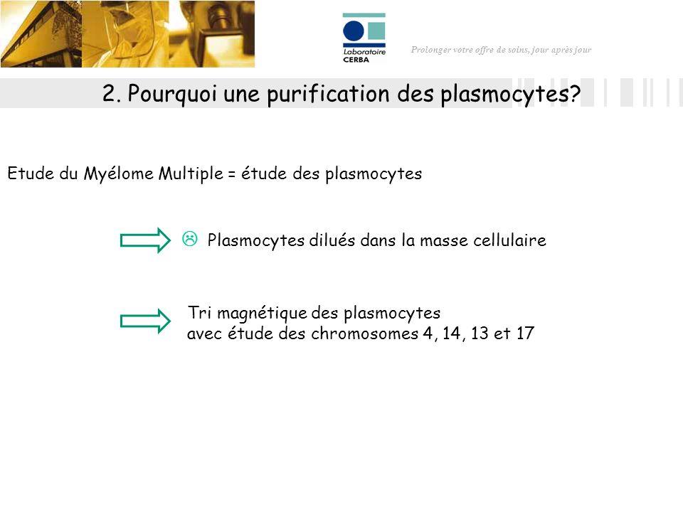 2. Pourquoi une purification des plasmocytes
