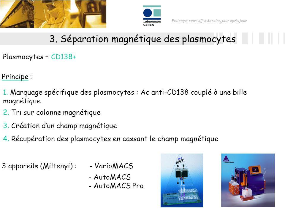 3. Séparation magnétique des plasmocytes