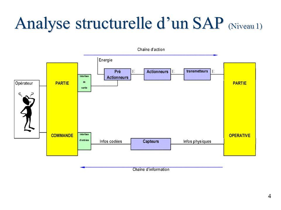 Analyse structurelle d'un SAP (Niveau 1)