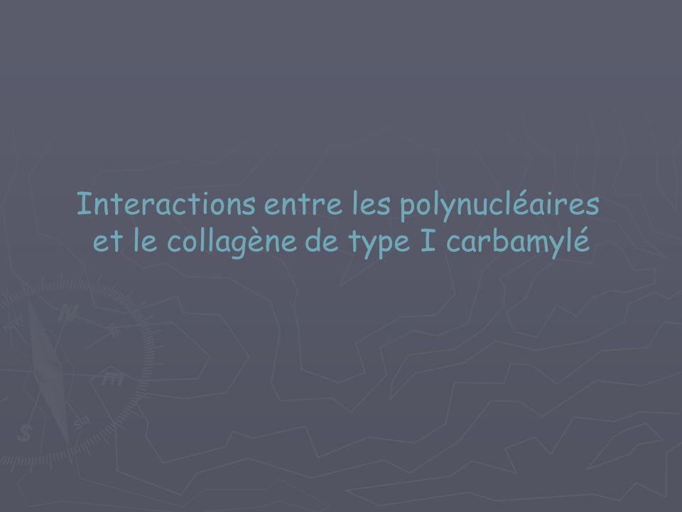 Interactions entre les polynucléaires