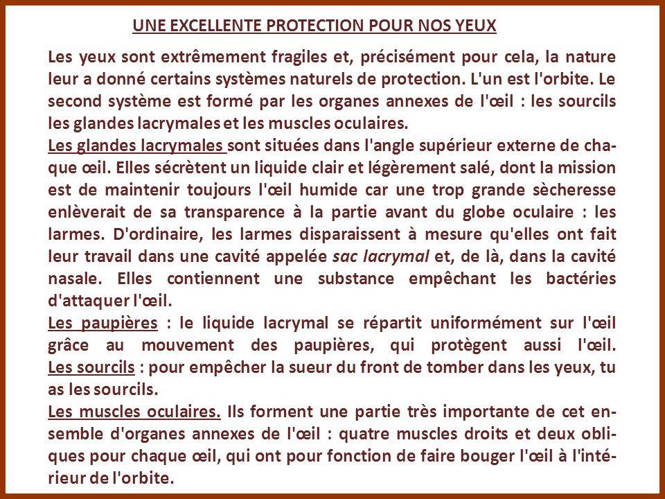 UNE EXCELLENTE PROTECTION POUR NOS YEUX