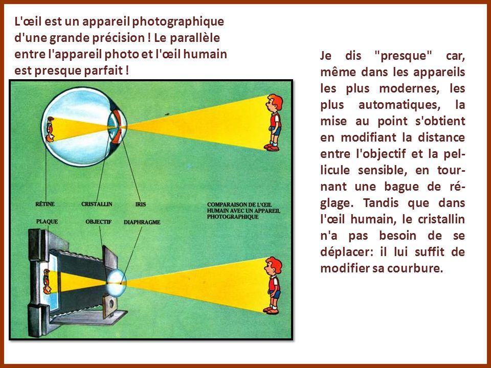 L œil est un appareil photographique