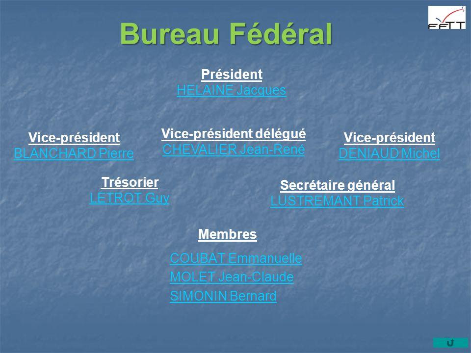 Vice-président délégué