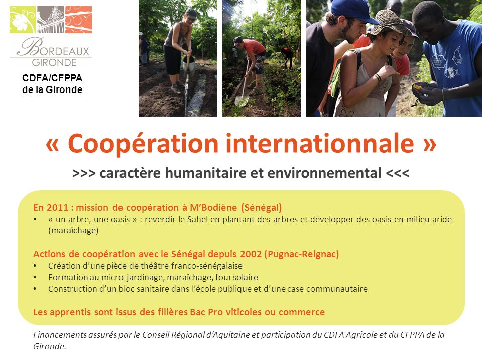 « Coopération internationnale »
