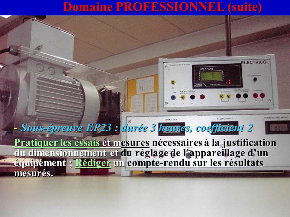 Domaine PROFESSIONNEL (suite)