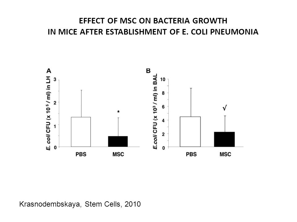 EFFECT OF MSC ON BACTERIA GROWTH