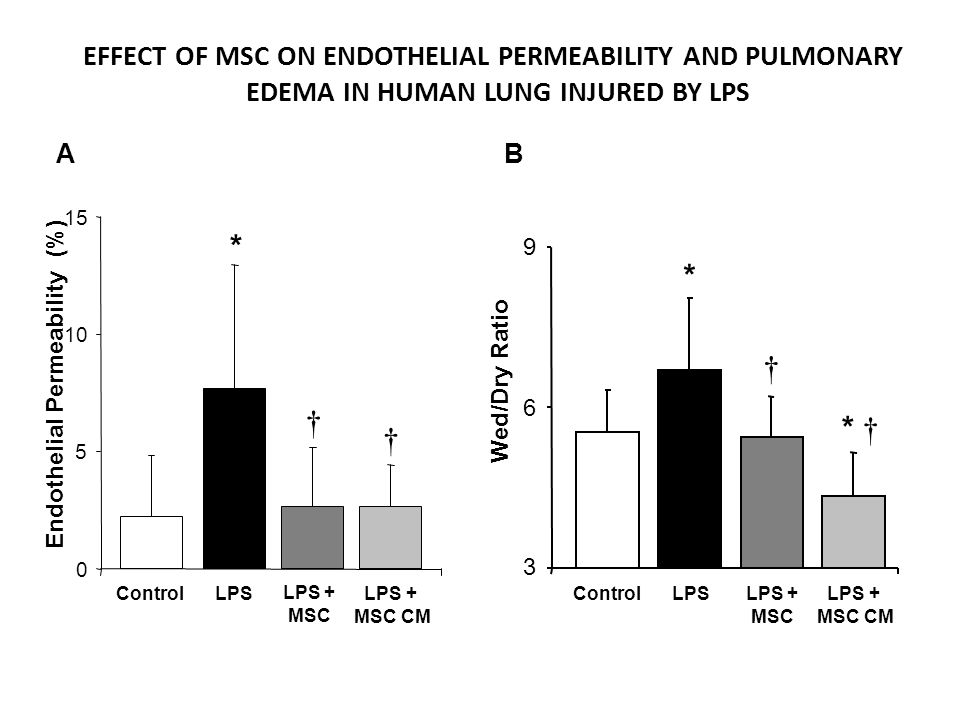 * * † † * † † EFFECT OF MSC ON ENDOTHELIAL PERMEABILITY AND PULMONARY