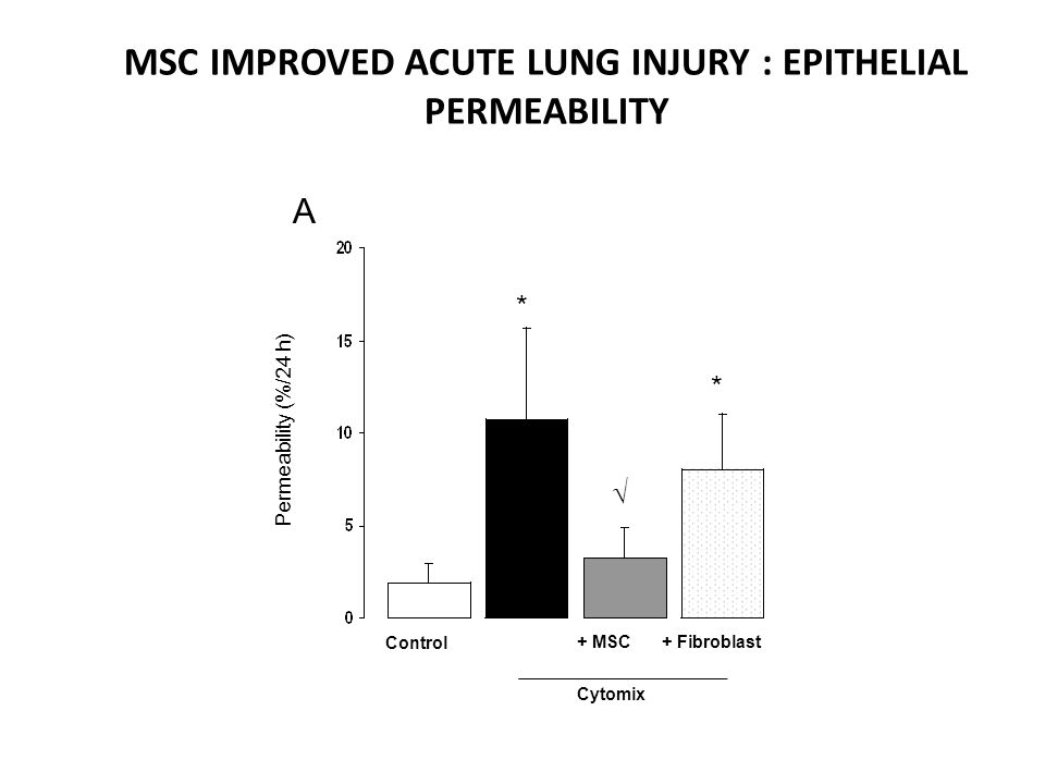 MSC IMPROVED ACUTE LUNG INJURY : EPITHELIAL PERMEABILITY