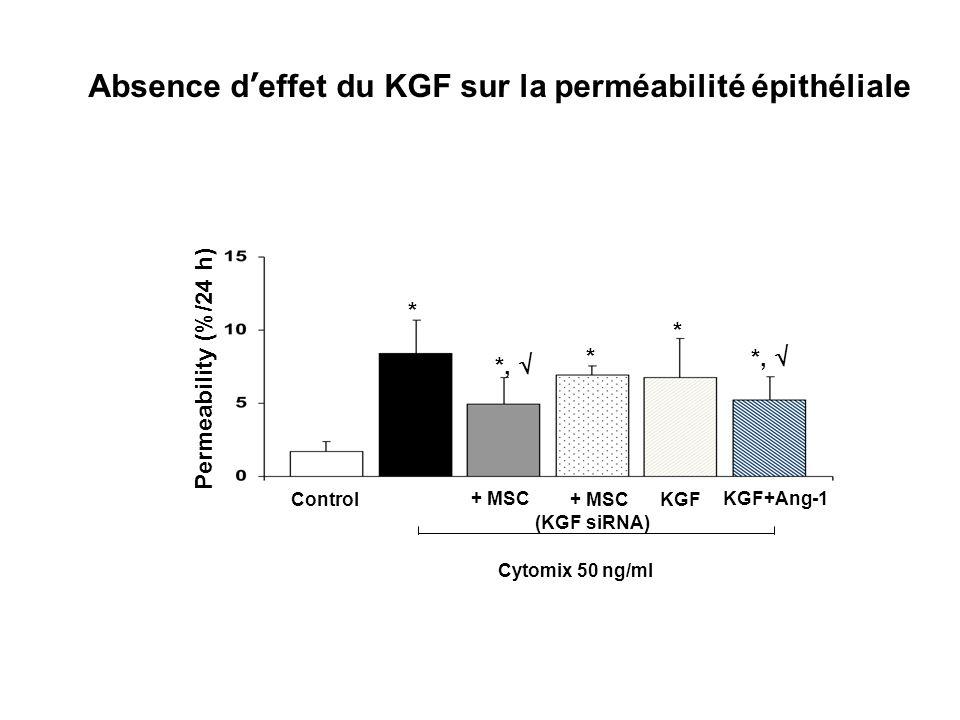 Absence d'effet du KGF sur la perméabilité épithéliale