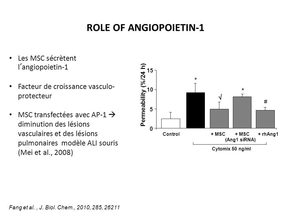 ROLE OF ANGIOPOIETIN-1 Les MSC sécrètent l'angiopoietin-1