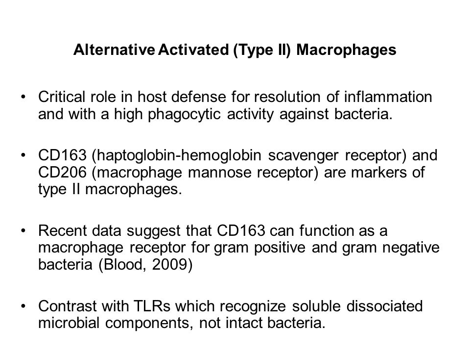 Alternative Activated (Type II) Macrophages