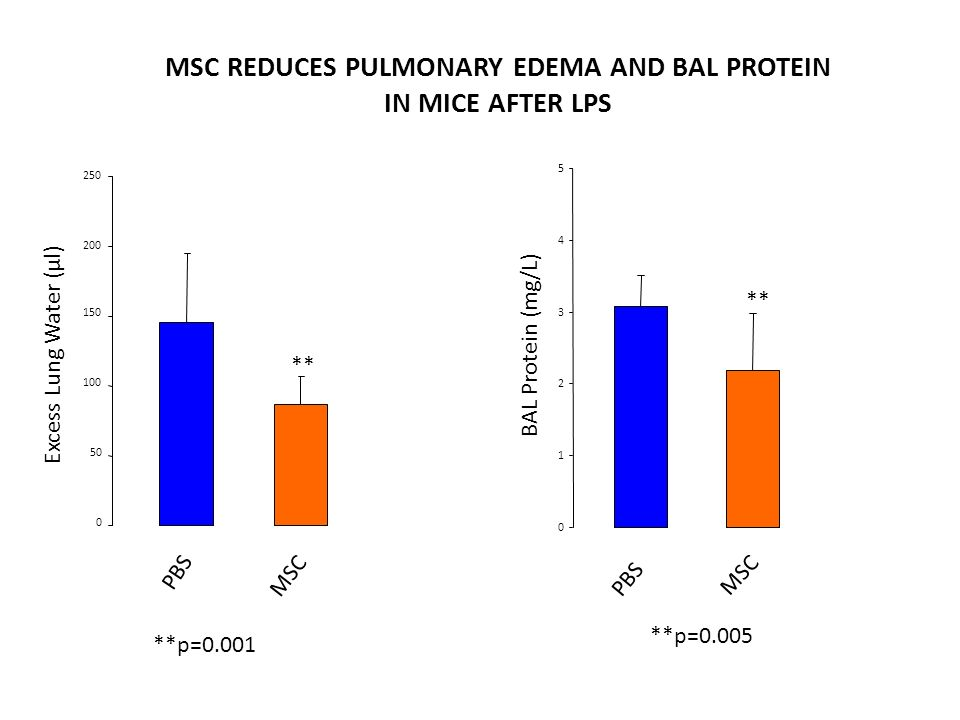 MSC REDUCES PULMONARY EDEMA AND BAL PROTEIN