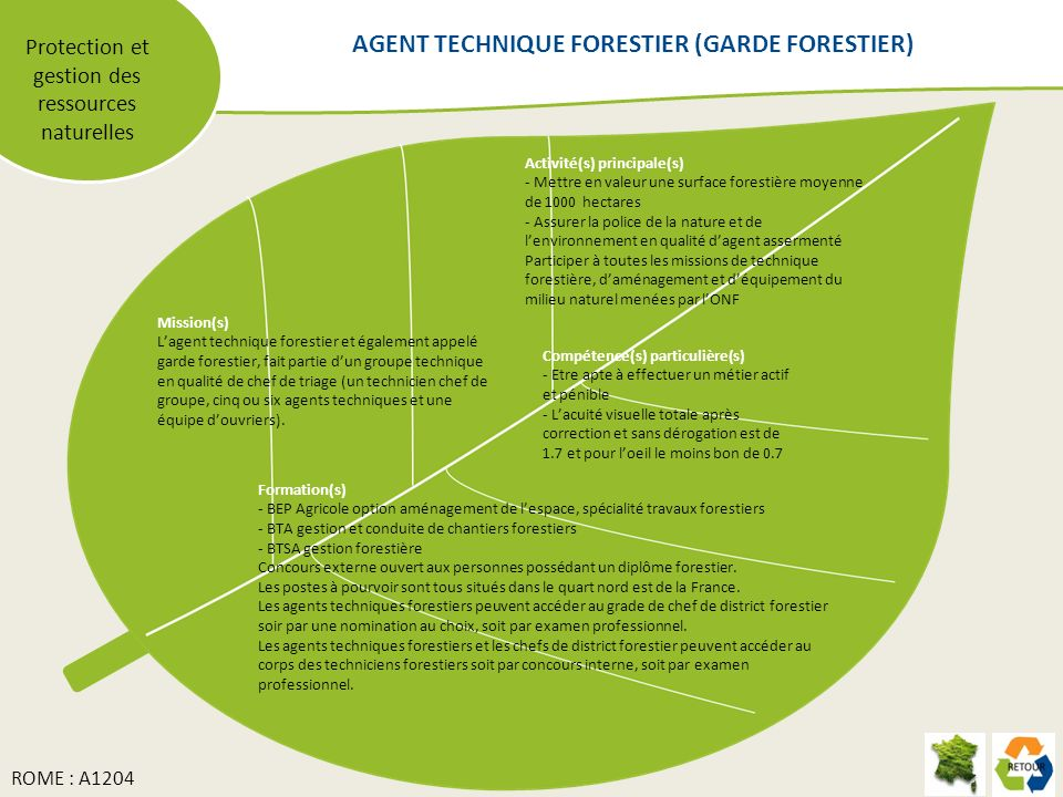 AGENT TECHNIQUE FORESTIER (GARDE FORESTIER)