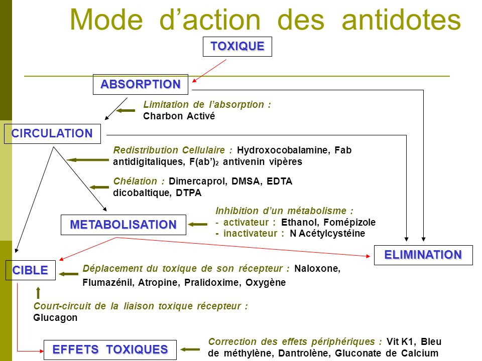 Mode d'action des antidotes