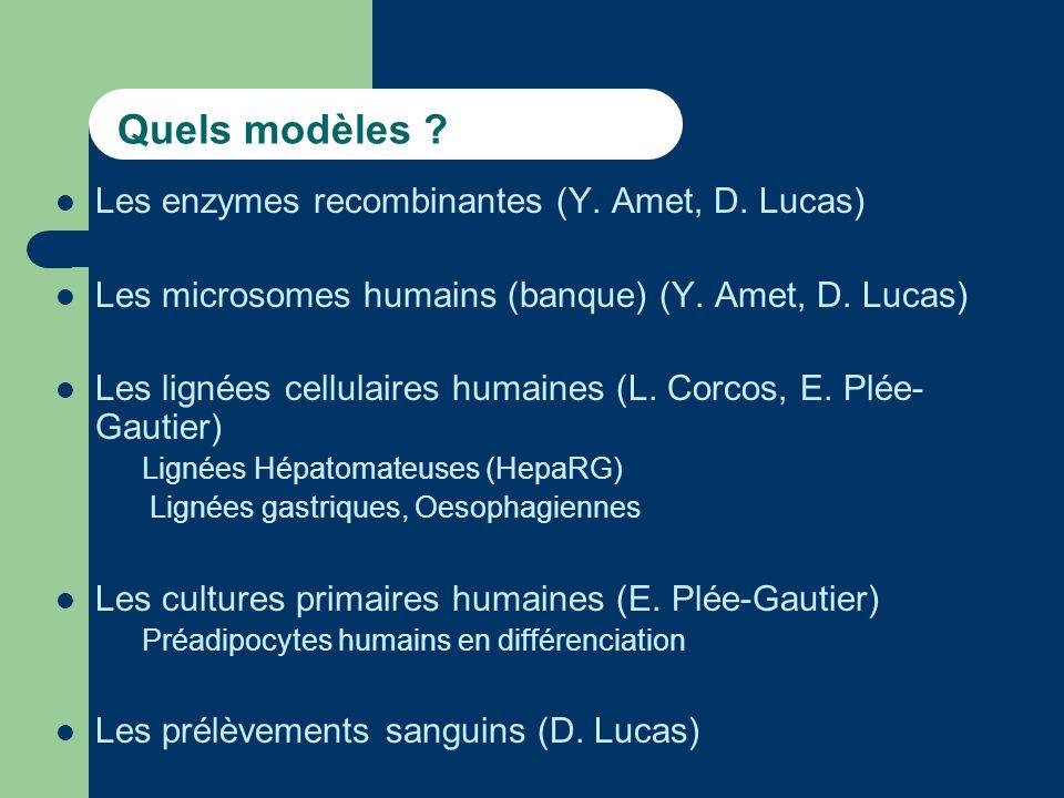 Quels modèles Les enzymes recombinantes (Y. Amet, D. Lucas)
