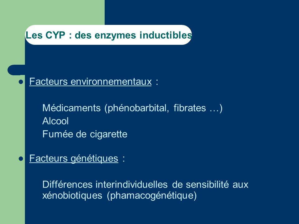 Les CYP : des enzymes inductibles