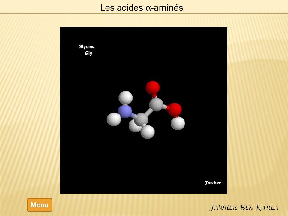 Les acides α-aminés Menu Jawher Ben Kahla