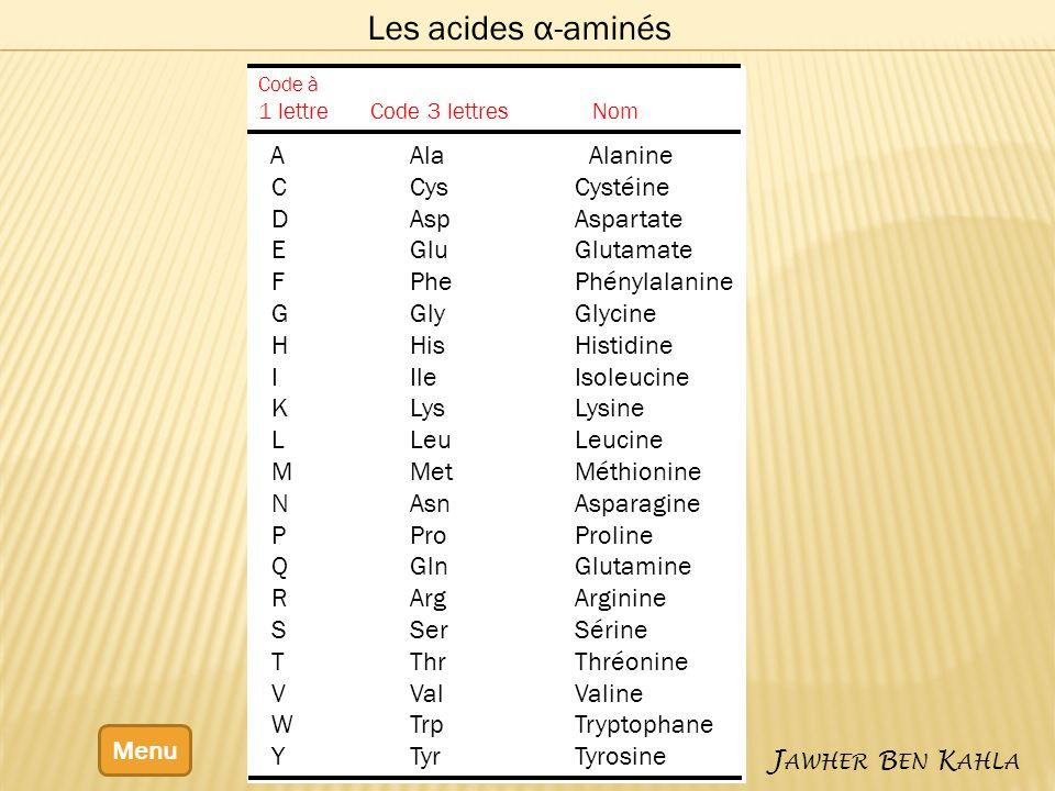 Les acides α-aminés C Cys Cystéine D Asp Aspartate E Glu Glutamate