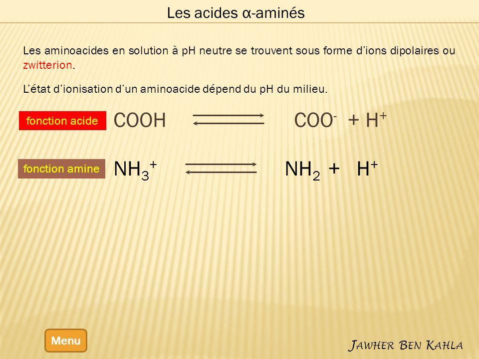 COOH COO- + H+ NH3+ NH2 + H+ Les acides α-aminés