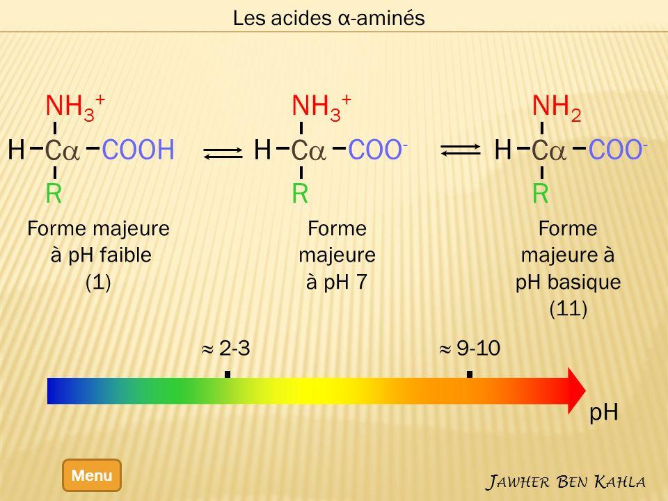 Forme majeure à pH basique