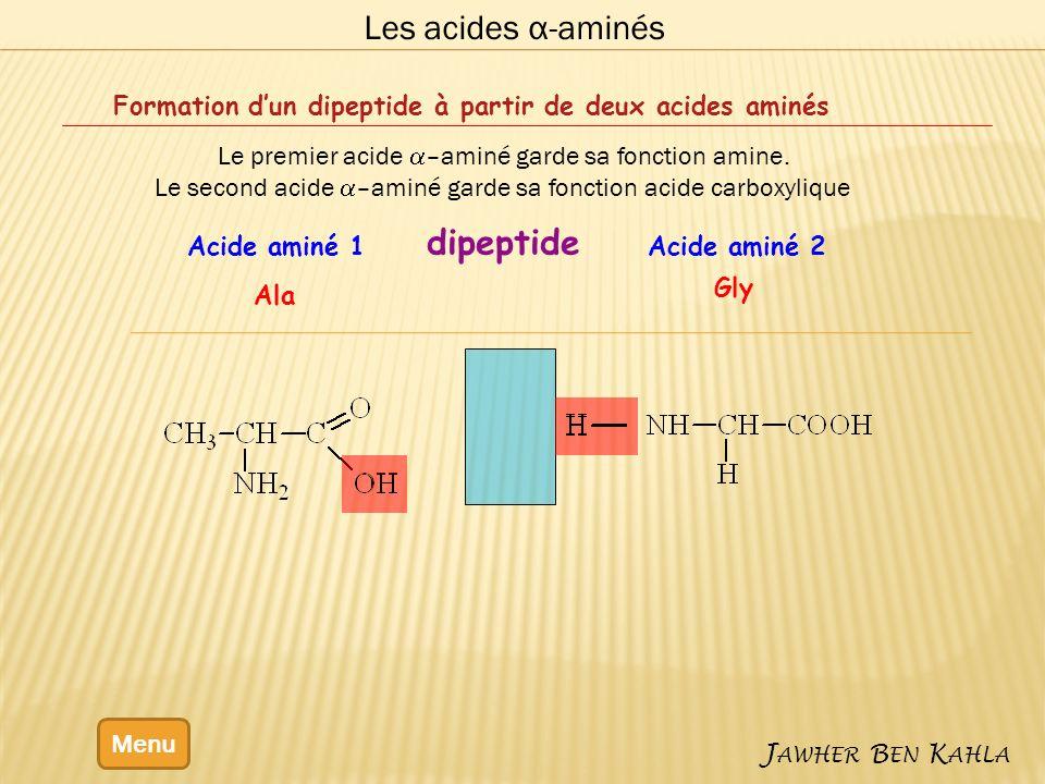 Les acides α-aminés dipeptide