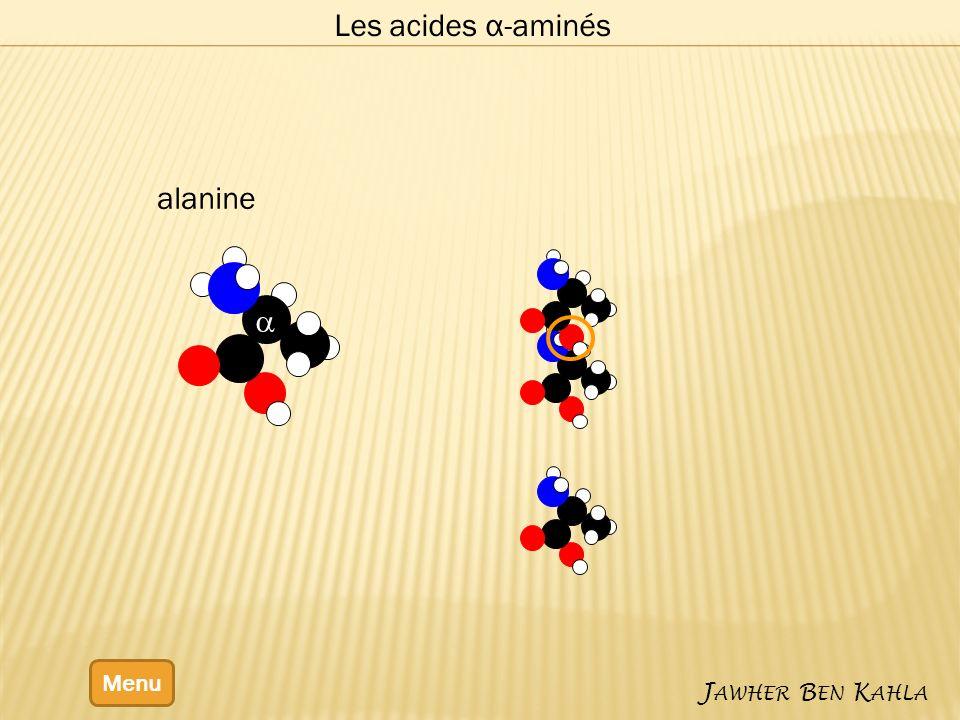 Les acides α-aminés alanine a Menu Jawher Ben Kahla