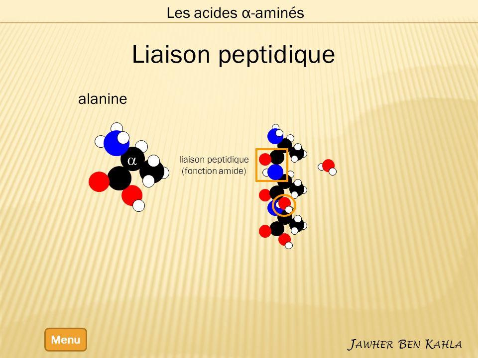 Liaison peptidique Les acides α-aminés alanine a Menu Jawher Ben Kahla