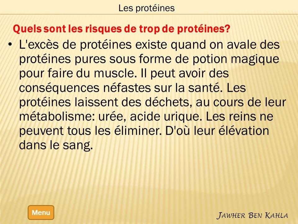 Quels sont les risques de trop de protéines