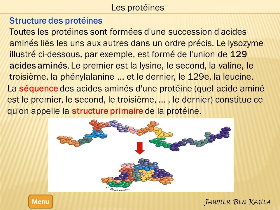 Structure des protéines