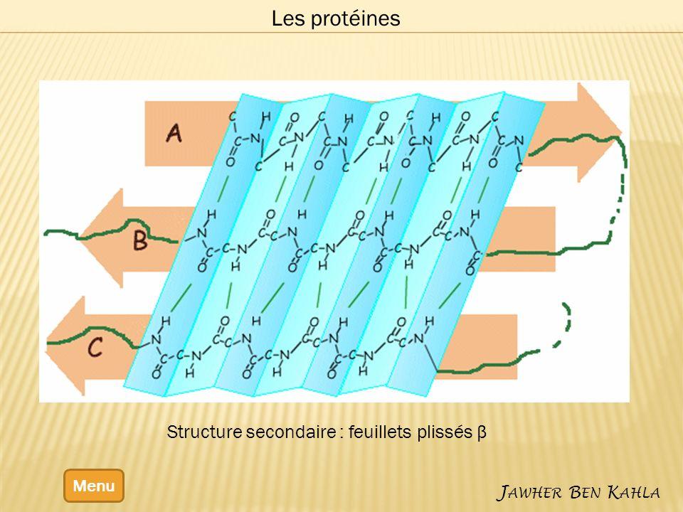 Les protéines Structure secondaire : feuillets plissés β Menu