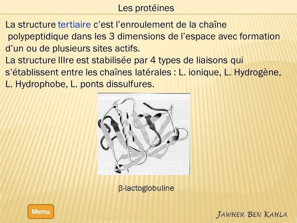La structure tertiaire c'est l'enroulement de la chaîne