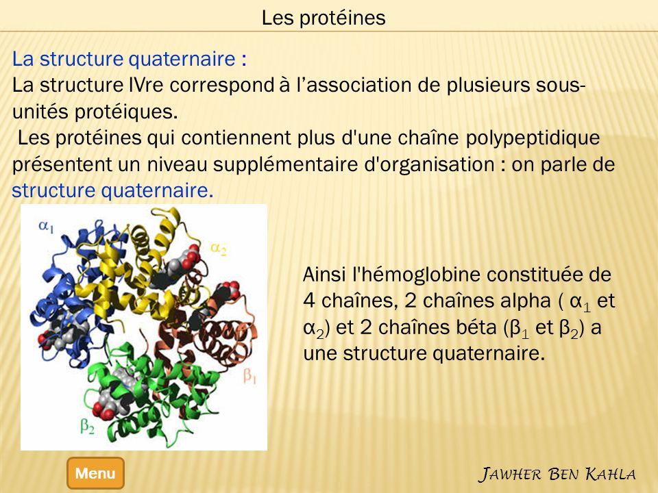 La structure quaternaire :