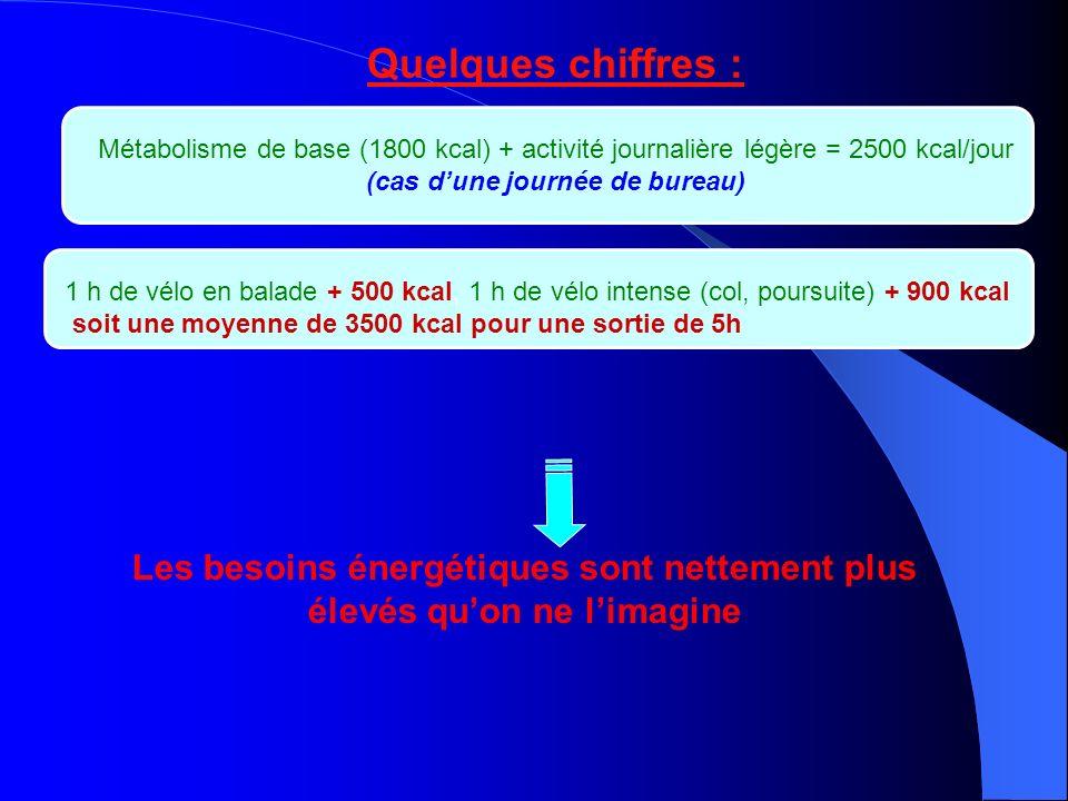 Quelques chiffres : Métabolisme de base (1800 kcal) + activité journalière légère = 2500 kcal/jour.