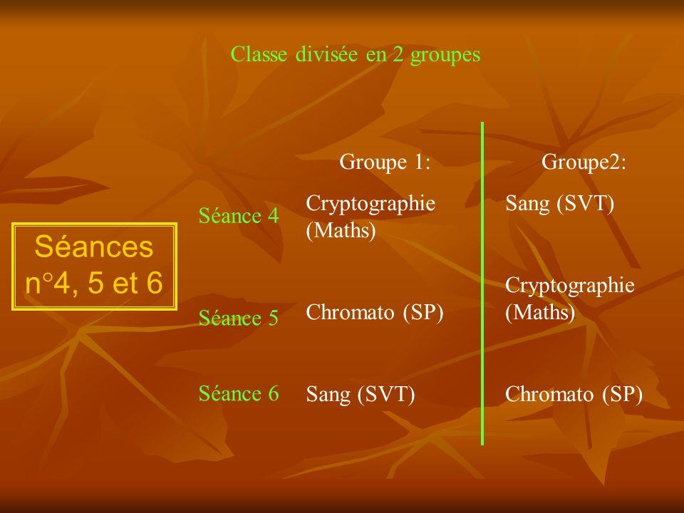 Séances n°4, 5 et 6 Classe divisée en 2 groupes Groupe 1: