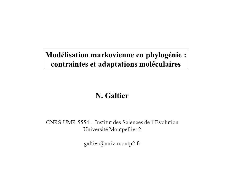 Modélisation markovienne en phylogénie :