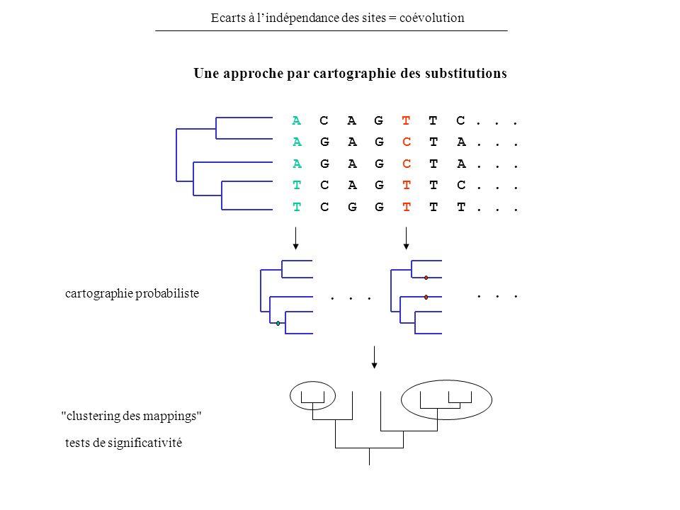 Une approche par cartographie des substitutions
