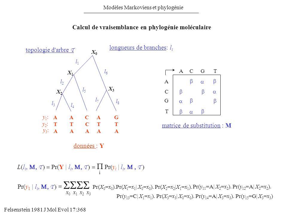 Calcul de vraisemblance en phylogénie moléculaire